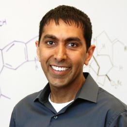 Neil K. Garg - Medicinal & Bioorganic Chemistry Foundation